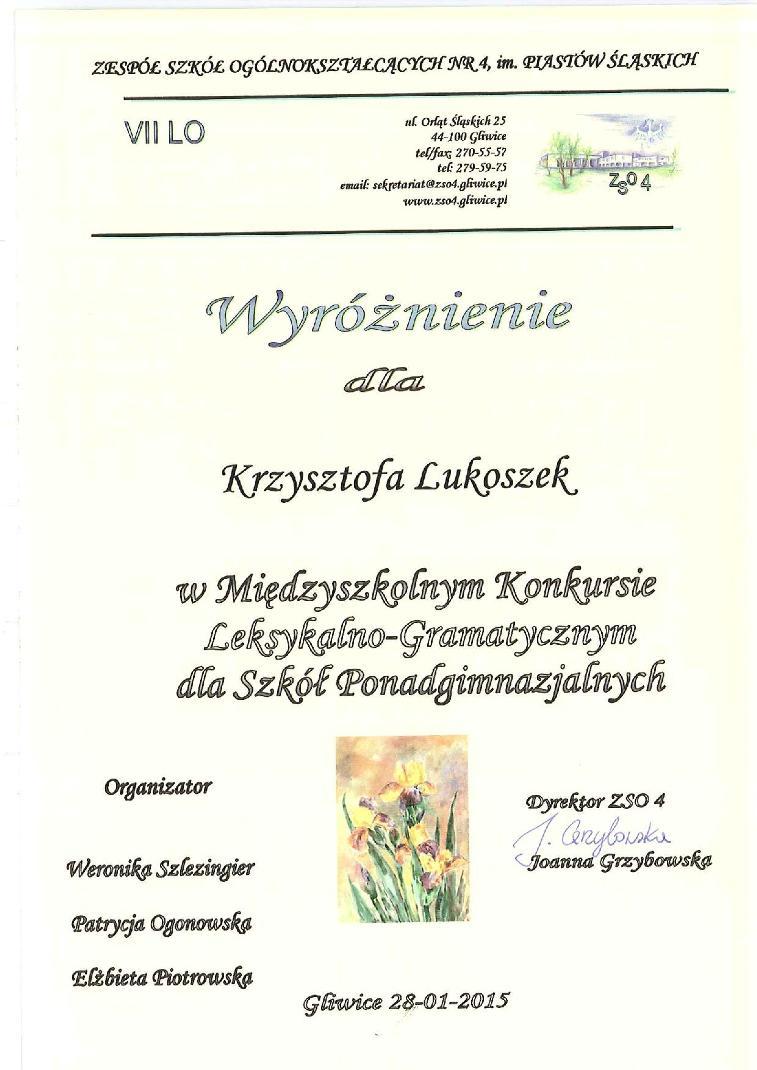 Dyplom - Krzyszto Lukoszek