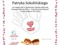 sokolinski-page-001